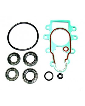 SUZUKI DF25 V TWIN SEAL KIT