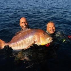 Ψάρεψε Συναγρίδα 11 κιλών ανοιχτά των Οινουσσών
