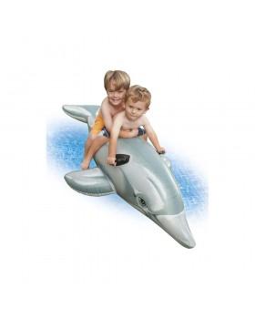 Lil` Dolphin