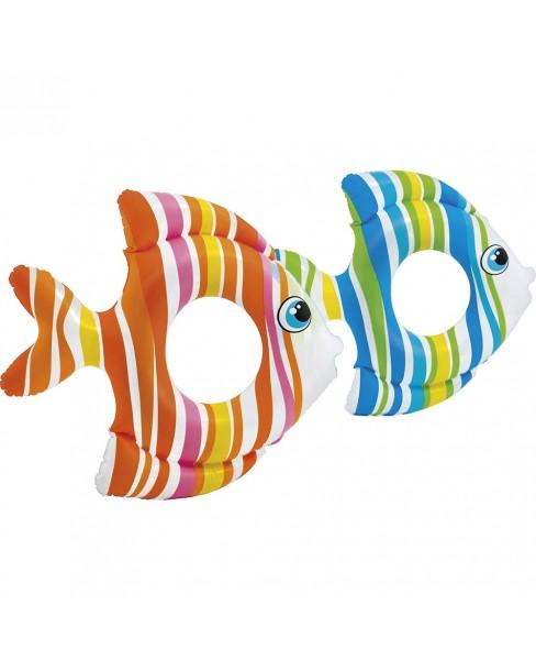 Tropical Fish Rings