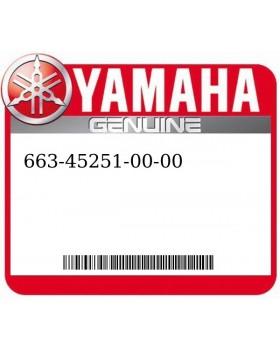 Yamaha Part 663-45251-00-00 Anode