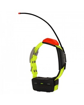 Garmin-Κολάρο T5 GPS Dog