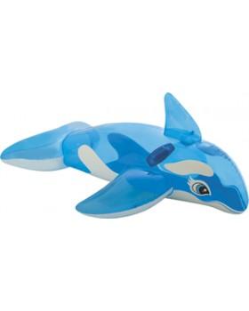 Intex-Lil' Whale